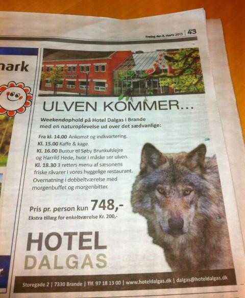 Ulve-rejser