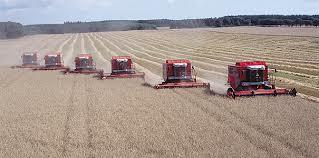 landbrugSaedskifte