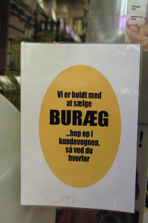 Burag2_web