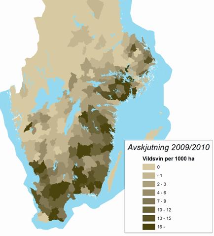 vildsvin_avskjutning_karta_2009-2010