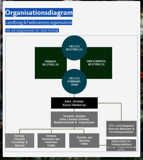 Organisationsdiagram_Aktuelt