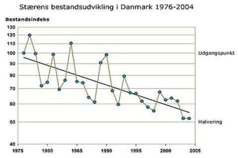 Stærens bestand1976-2004