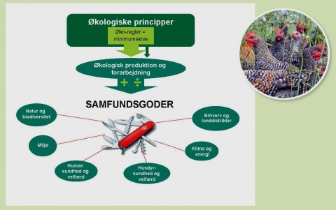 Figur 1 Schweitzerkniv Vidensyntese