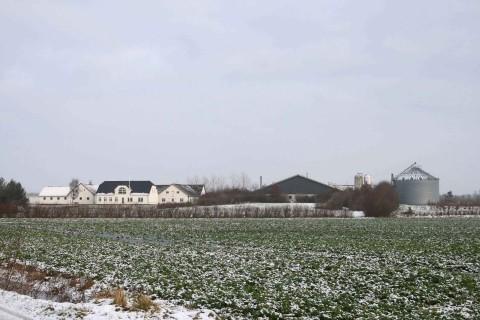 Gyllelandbrug